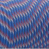 Paracord 550 blueberry stripe #095